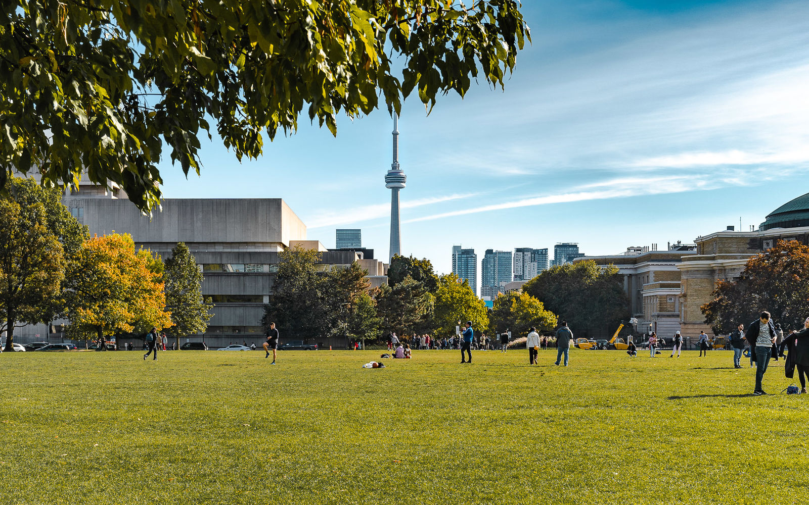 The CN Tower seen on a sunny day from the University of Toronto campus